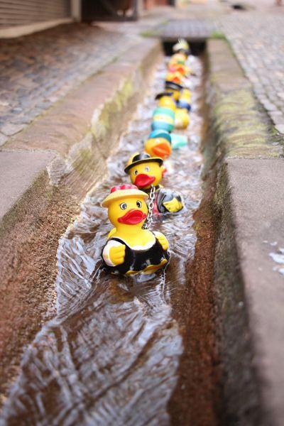 The Freiburg Bächle rubber duck