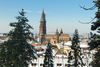 Freiburg Münster im Winter