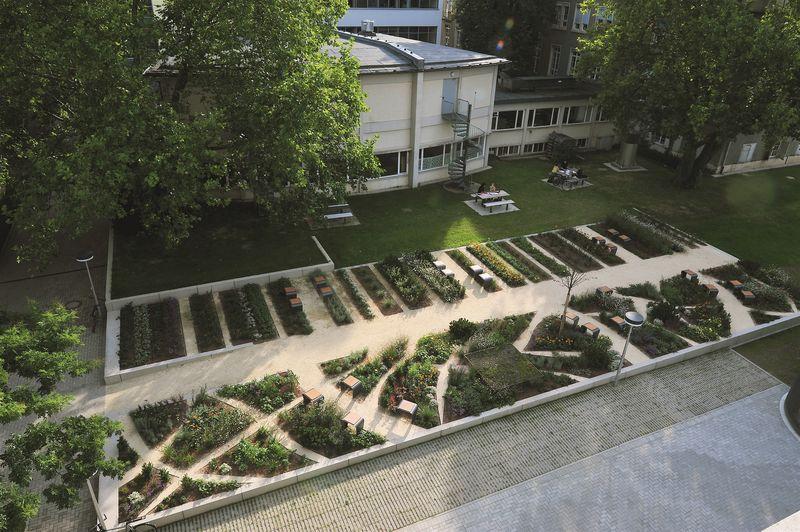 Physics Garden