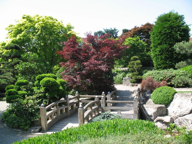 Jardin japonais dans le « Seepark » | Foret Noire - Schwarzwald ...
