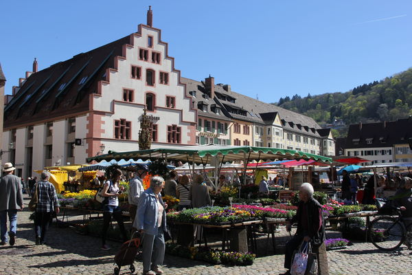 Farmers market with the Kornhaus