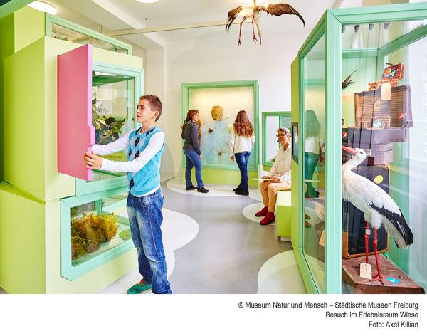Museo de la Naturaleza y el Ser Humano Freiburg