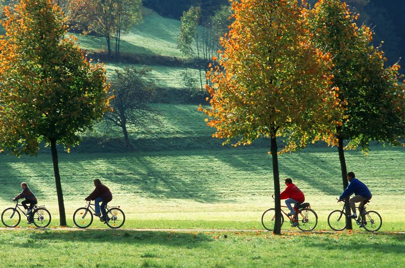 Cyclists at the Dreisam Freiburg
