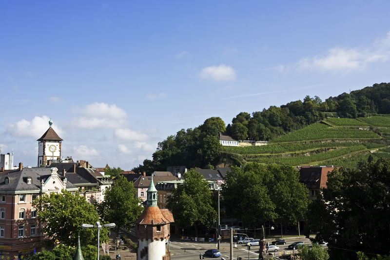 Staatsweingut Freiburg