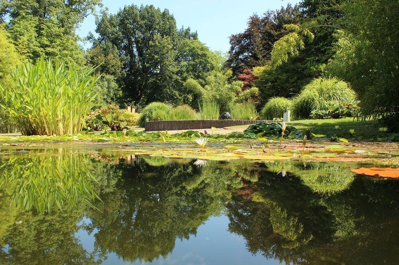 Giardini pubblici con stagno