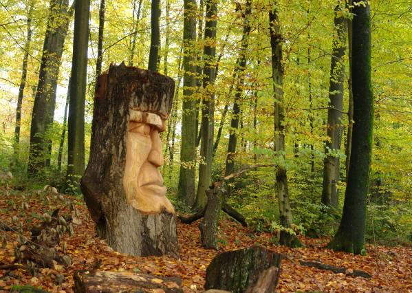 WaldHaus Holzkopf