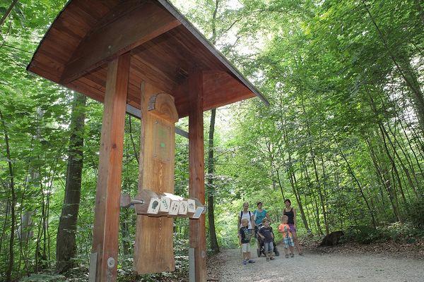 Mitmachstation auf dem Walderlebnispfad bei Freising