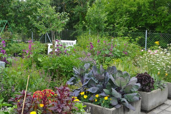 Im Kleingarten - Weihenstephaner Gärten in Freising