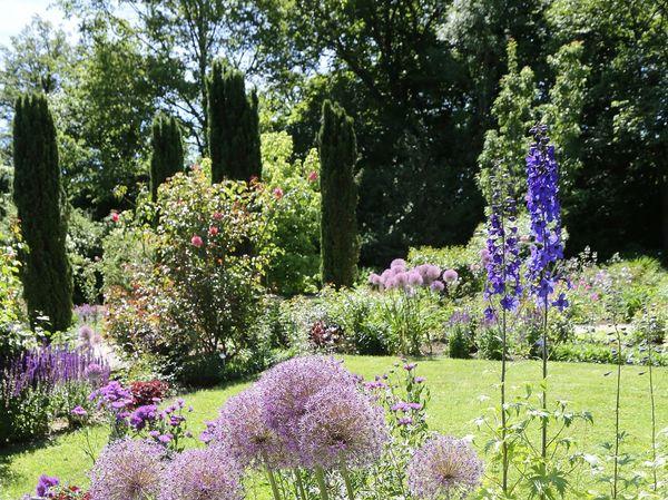 Blumen und Stauden im Oberdieckgarten