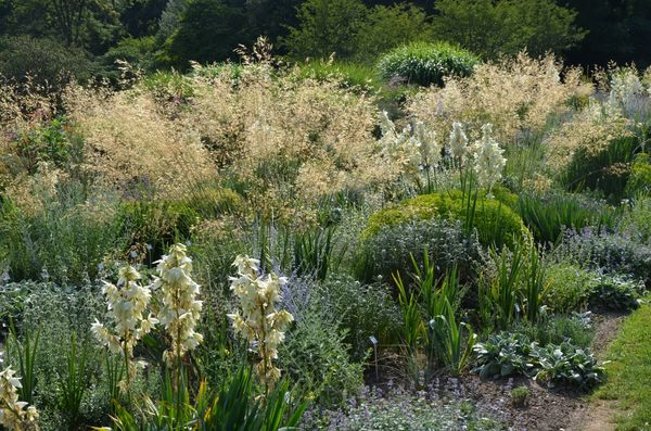 Blumen im Sichtungsagarten - Weihenstephaner Gärten in Freising