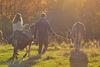 Esel-Wanderung
