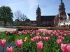 Stadtkirche mit Tulpen