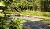 Erholen und Verweilen im Auenpark in Freyung