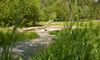 Der Auenpark Freyung im Nationalpark-FerienLand Bayerischer Wald ist ideal für Spaziergänge