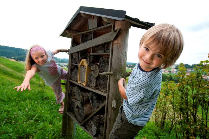 Ein interessantes Erlebnis für Kinder: Der Bienenerlebnisweg in Freyung
