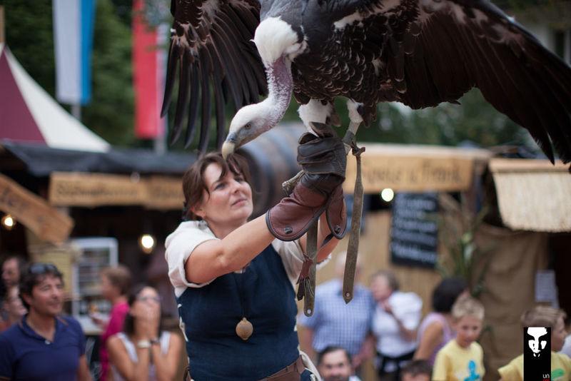 Greifvögel-Flugvorführung beim historischen Schlossfest rund um Schloss Wolfstein in Freyung