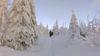 Schneeschuhwandern in Freyung im Bayerischen Wald