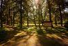 Arboretum , Foto: Stadt Eisenhüttenstadt