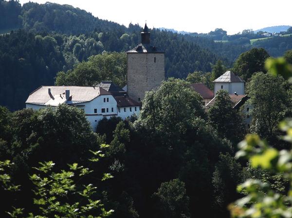 Blick auf Schloss Fürsteneck im Ilztal
