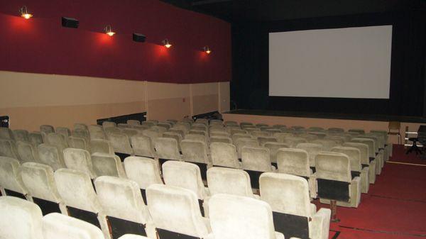 kino union programm