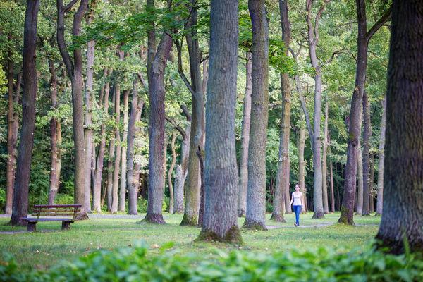 Stadtpark Fürstenwalde, Foto: Florian Läufer