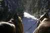 Kutschenfahrten Furth im Wald