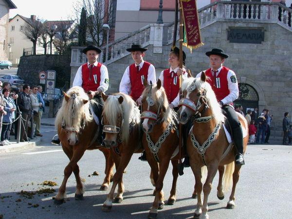 Prächtig geschmückte Pferde mit Reitern in Tracht beim Leonhardi-Ritt in Furth im Wald