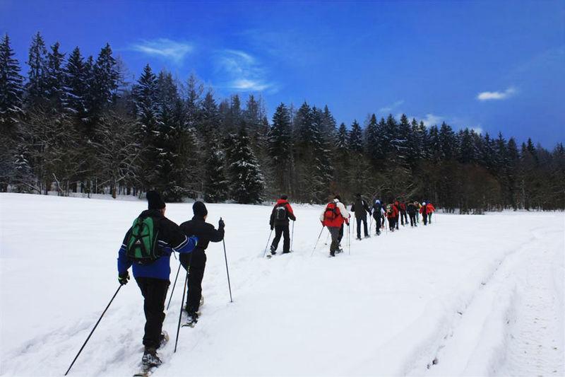 Schneeschuhwandern in Furth im Wald