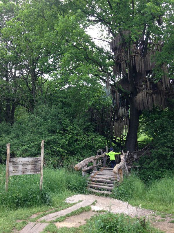 wildgarten mut zur wildnis bayerischer wald. Black Bedroom Furniture Sets. Home Design Ideas