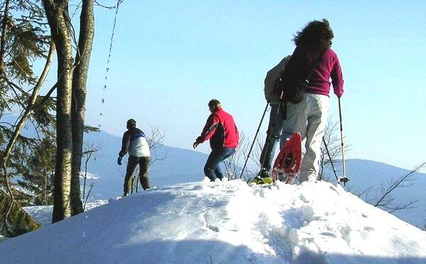 Wandervergnügen auf einer Schneeschuhtour im Hohenbogenwinkel im Bayerischen Wald
