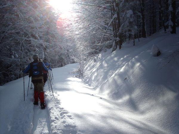 Schneeschuhwander auf dem Weg zum Klosterstein im Feriengebiet Teisnachtal - Bayerischer Wald
