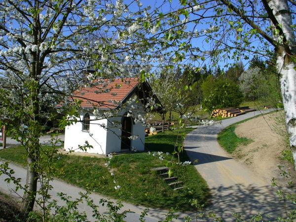 Blick auf die Hofbei-Kapelle in Altnußberg in der Gemeinde Geiersthal