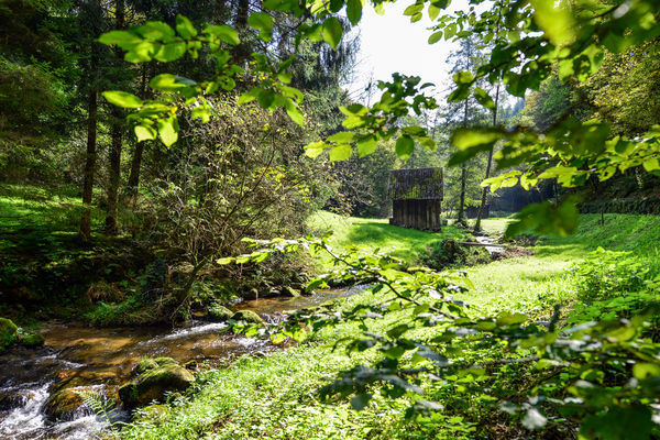Heuhütte im Reichenbachtal bei Gernsbach