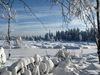 Wildsee im Winter
