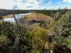Wildsee am Kaltenbronn mit Wanderweg