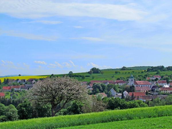 Blick auf Medelsheim im Frühjahr