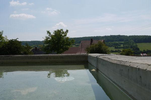 Kneipp-Anlage Walsheim