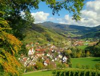 Schwarzwaldklinik Adresse