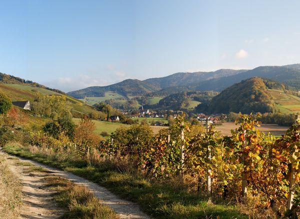 Herbstpanorama am Einbollen