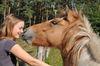 Pferde füttern und reiten, Foto: Elke Melchert