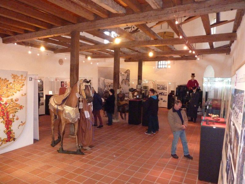 Gestütsmuseum - Innen