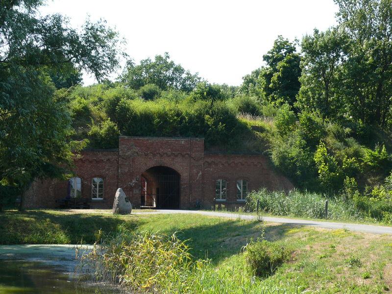 Von Reitwein bis Gorgast – Auf der Alten Oder