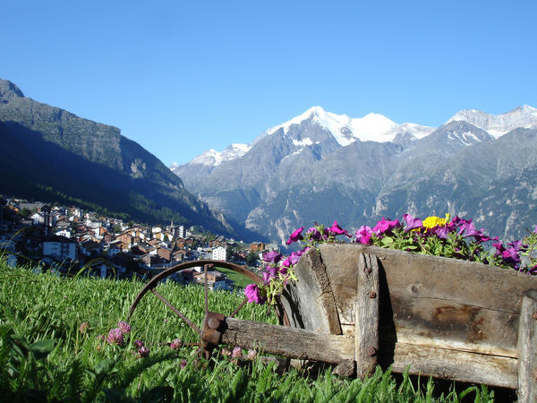 Dorf Grächen im Sommer mit Blumen