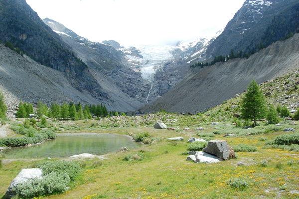 Riedgletscher- Gletscherzunge