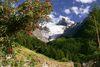 Riedgletscher - Ausblick von Gasenried