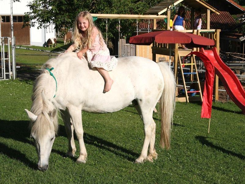 Kinderspaß mit Pferden auf dem Peterhof bei Grafenau im Nationalpark-FerienLand Bayerischer Wald