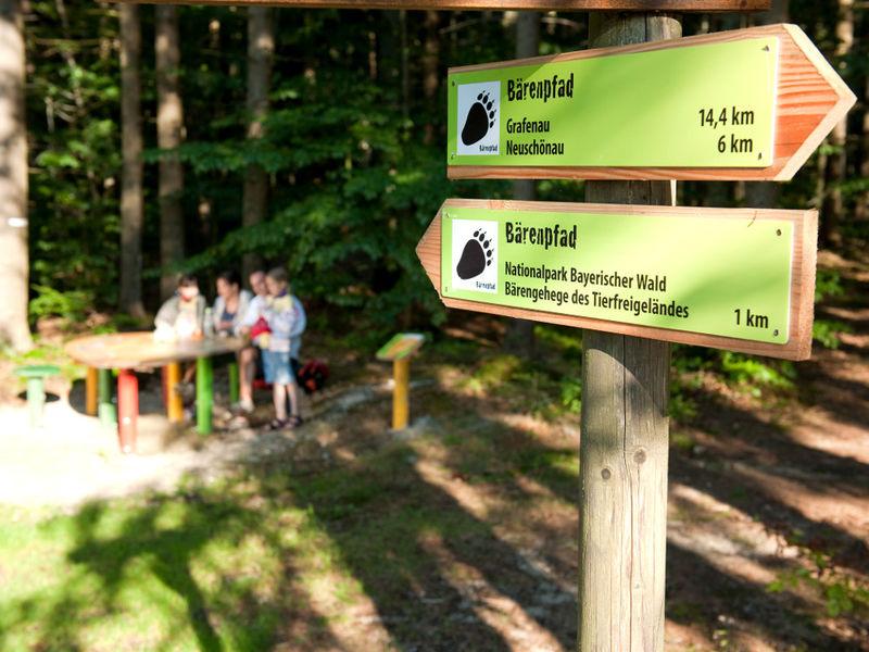 Wegweiser auf dem Bärenpfad von Grafenau ins Bärengehege im Nationalpark
