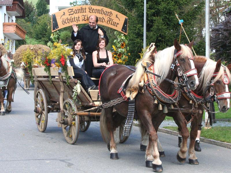Festlich geschmückte Pferdegespanne beim Leonhardi-Ritt in der Bärenstadt Grafenau