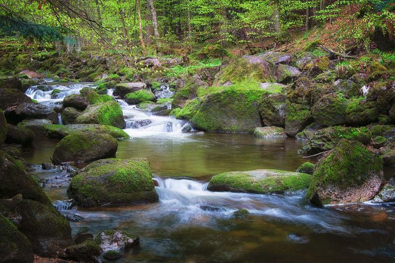 Traumpfad Ilz: Wandern von den Quellbächen bis zur Mündung