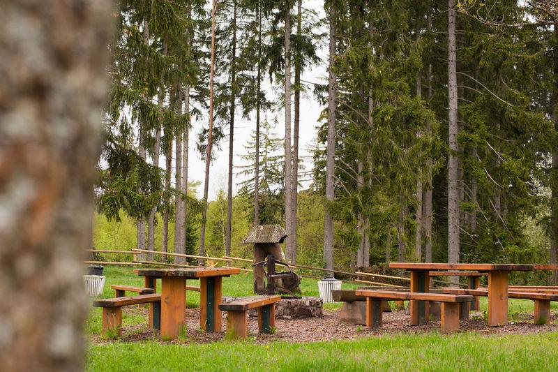 grillplatz schl chtsee urlaubsland baden w rttemberg. Black Bedroom Furniture Sets. Home Design Ideas